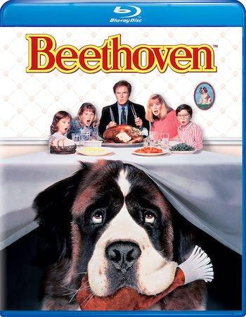 Beethoven 1992 Dual Audio Hindi 480p BluRay 300MB