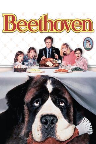 Beethoven 1992 Dual Audio Hindi 480p BluRay x264 300MB ESubs
