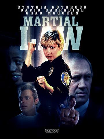 Martial Law 1990 Hollywood Movie Hindi ORG 480p BluRay x264 300MB ESubs