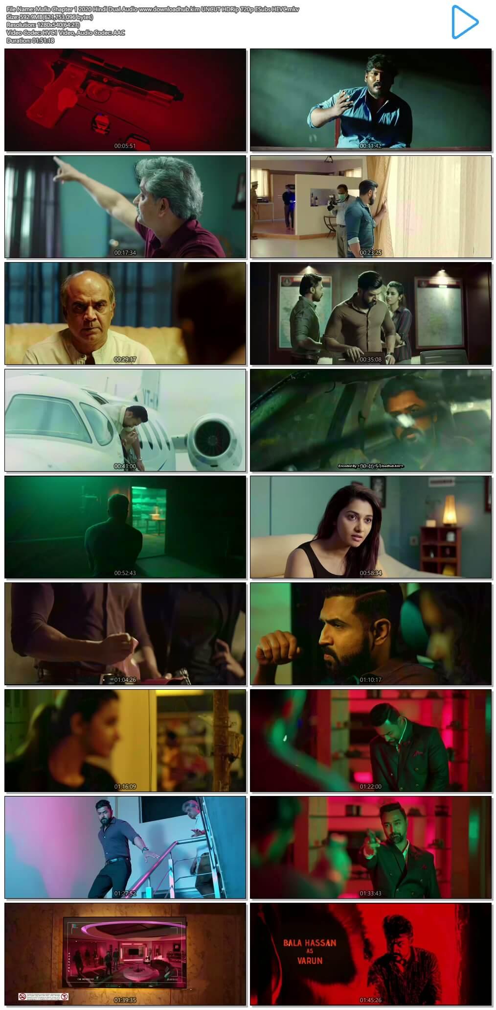 Mafia Chapter 1 2020 Hindi Dual Audio 600MB UNCUT HDRip 720p ESubs HEVC
