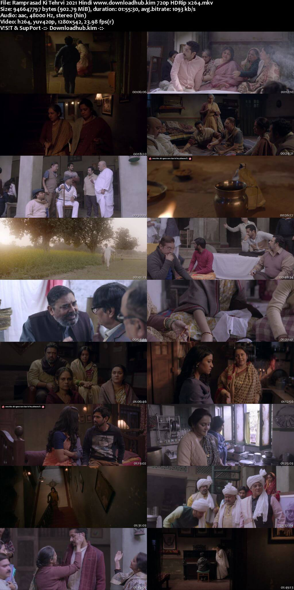 Ramprasad Ki Tehrvi 2021 Hindi 720p HDRip x264