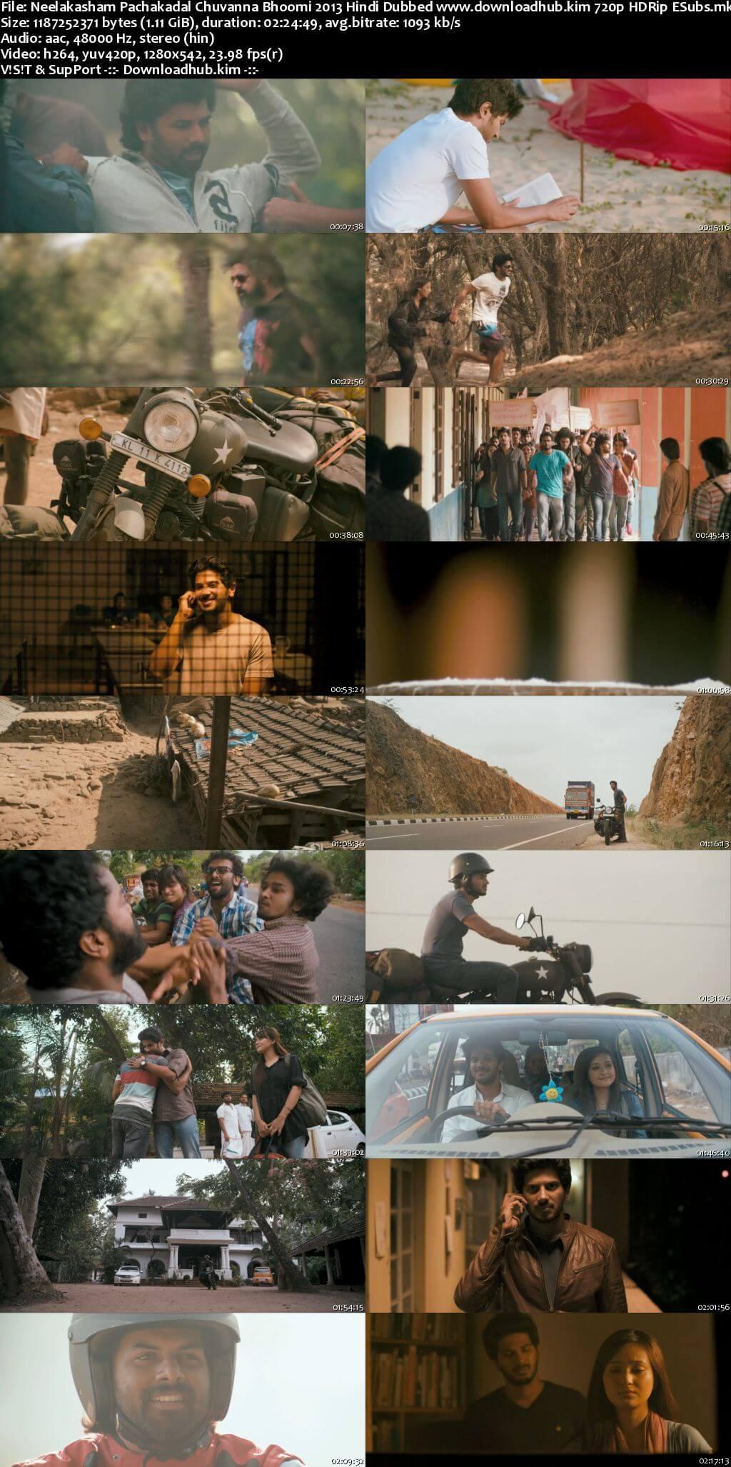 Neelakasham Pachakadal Chuvanna Bhoomi 2013 Hindi Dubbed 720p HDRip ESubs