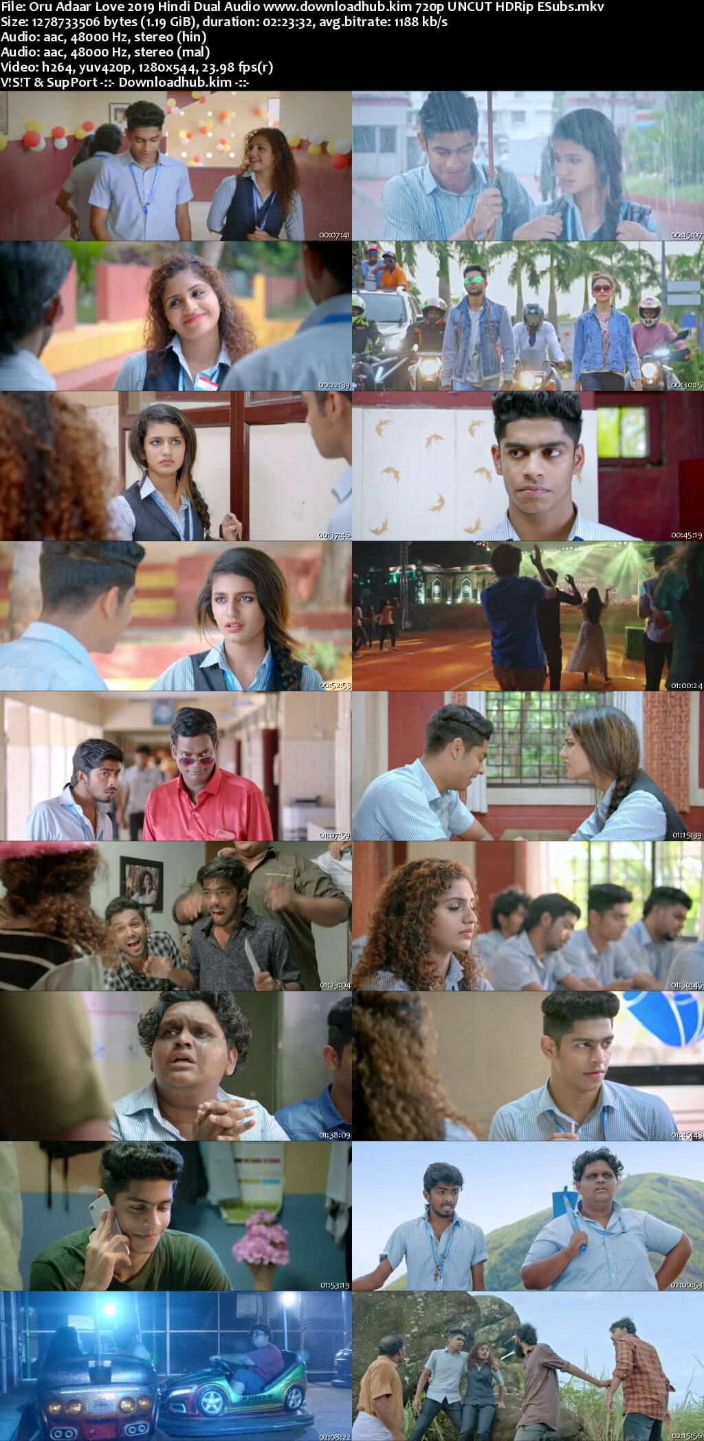 Oru Adaar Love 2019 Hindi Dual Audio 720p UNCUT HDRip ESubs