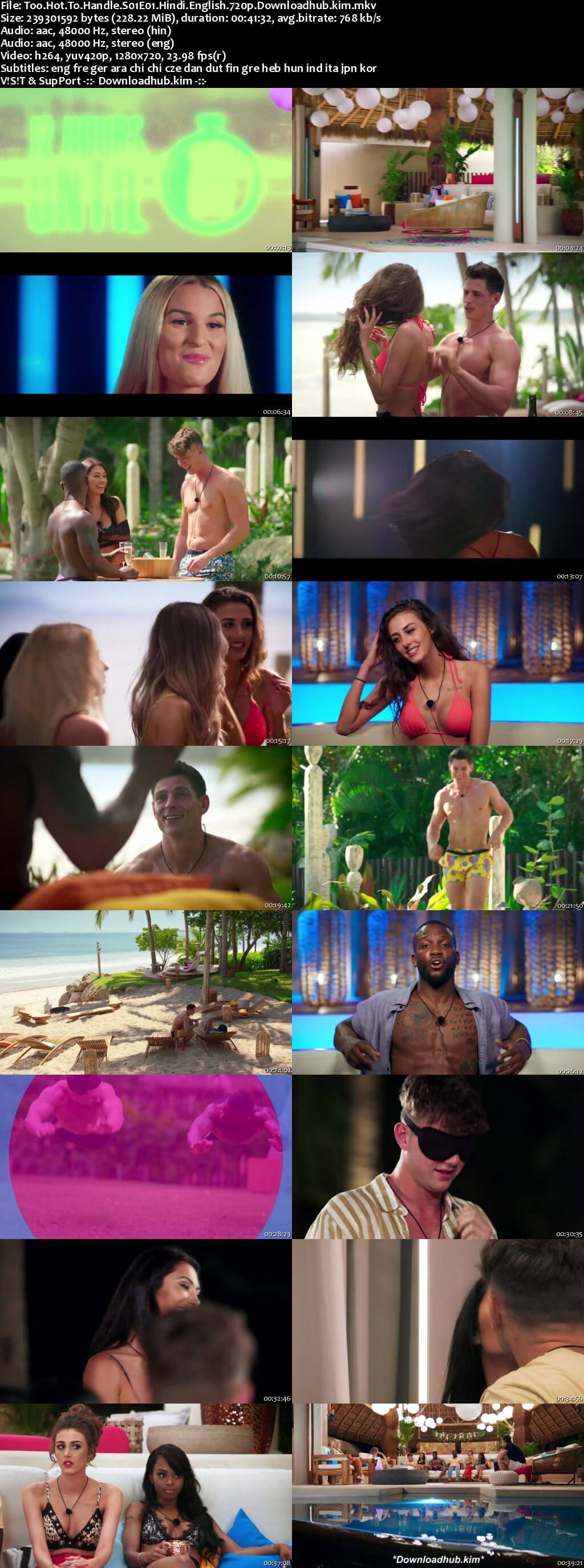 Too Hot to Handle 2020 S01 Complete Hindi Dual Audio 720p Web-DL MSubs
