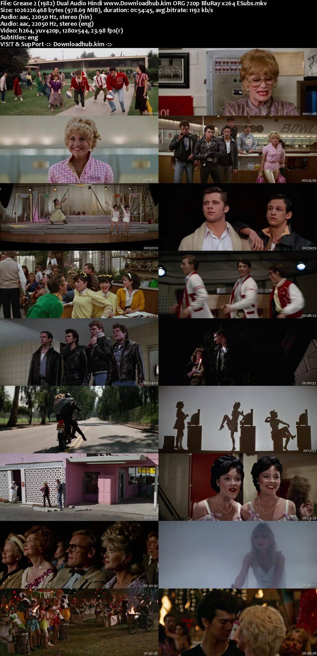 Grease 2 1982 Hindi Dual Audio 720p BluRay ESubs