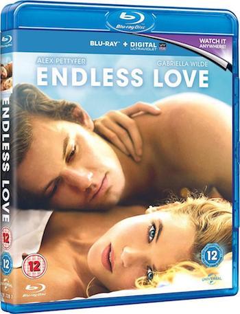 Endless Love 2014 Dual Audio Hindi 720p BluRay 900mb