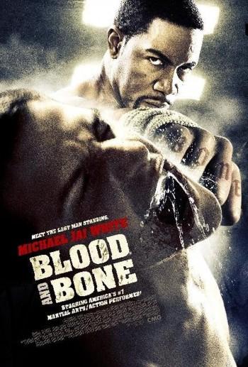 Blood and Bone 2009 Dual Audio Hindi English BRRip 720p 480p Movie Download
