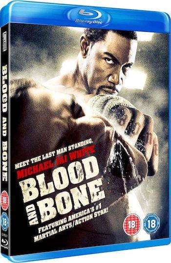 Blood and Bone 2009 Dual Audio Hindi 480p BluRay 300MB
