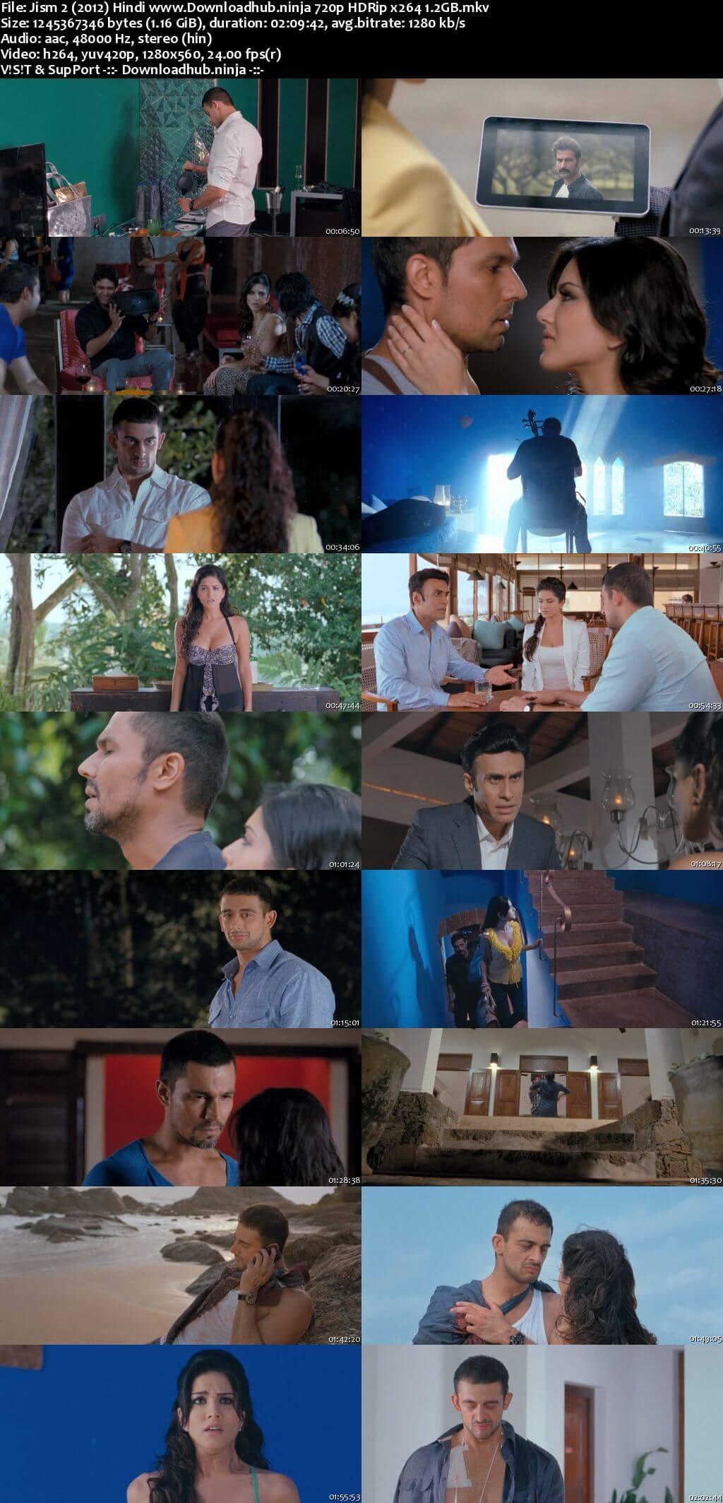 Jism 2 2012 Hindi 720p HDRio x264
