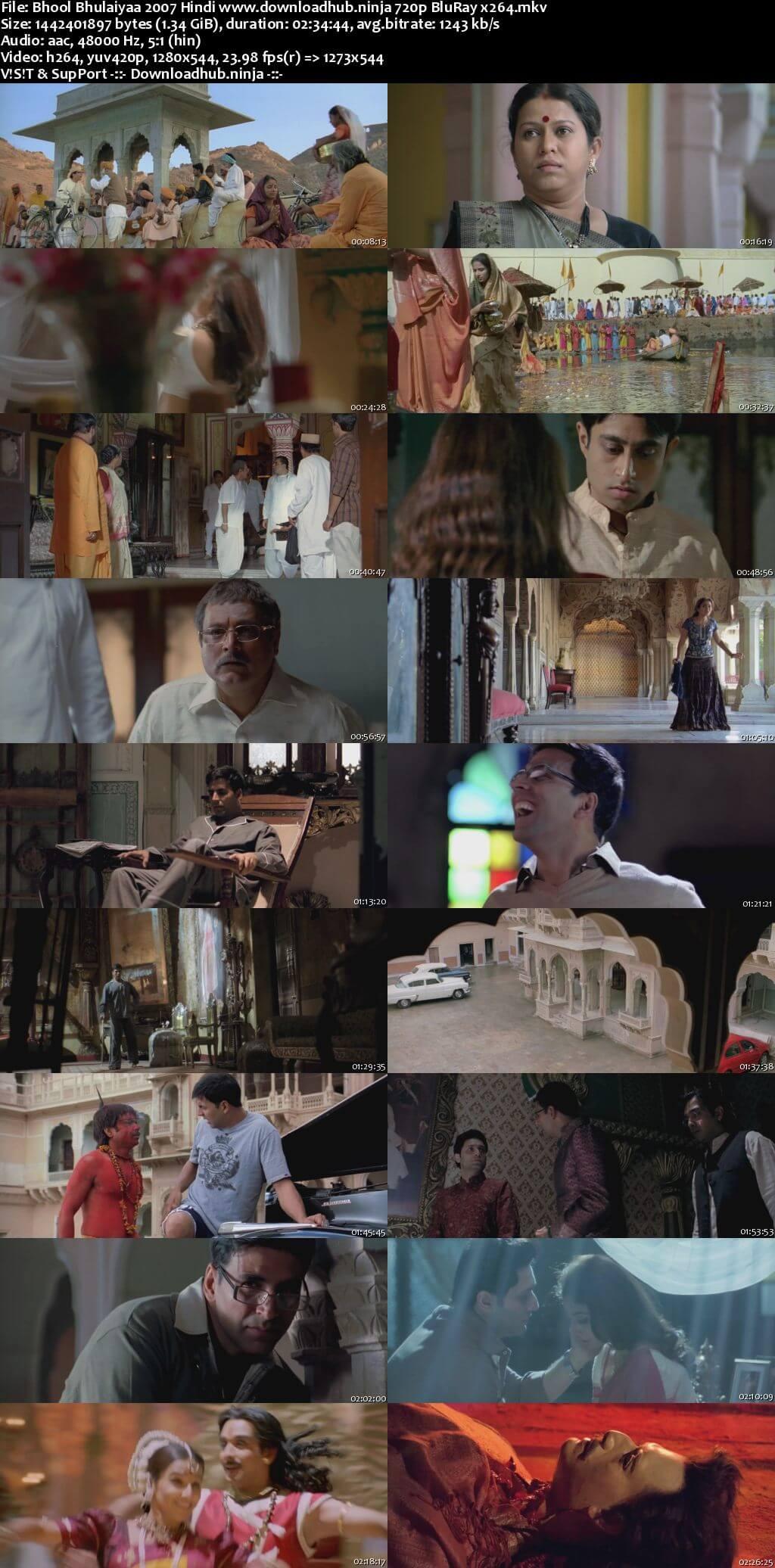 Bhool Bhulaiyaa 2007 Hindi 720p BluRay x264