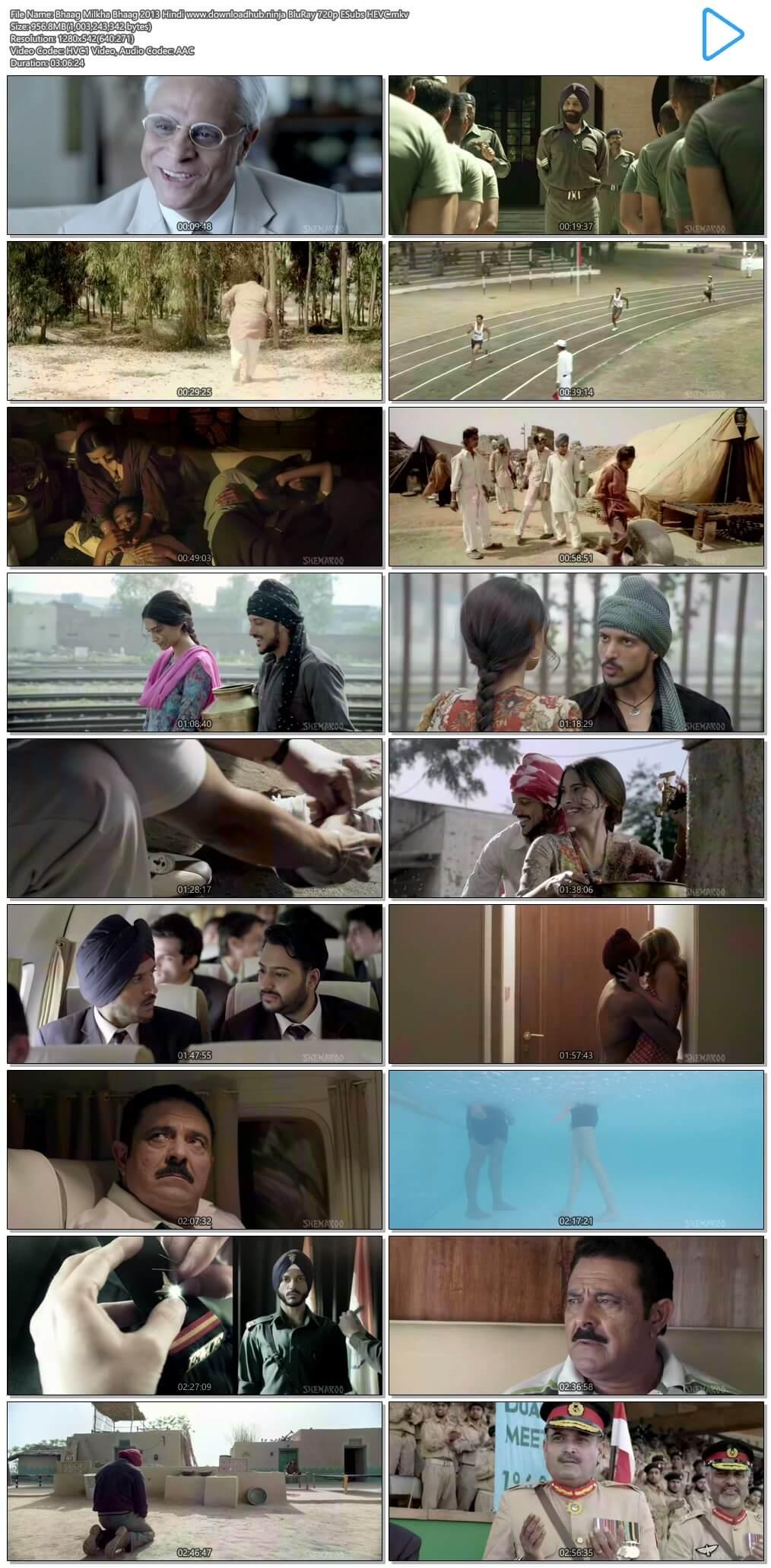 Bhaag Milkha Bhaag 2013 Hindi 950MB BluRay 720p ESubs HEVC