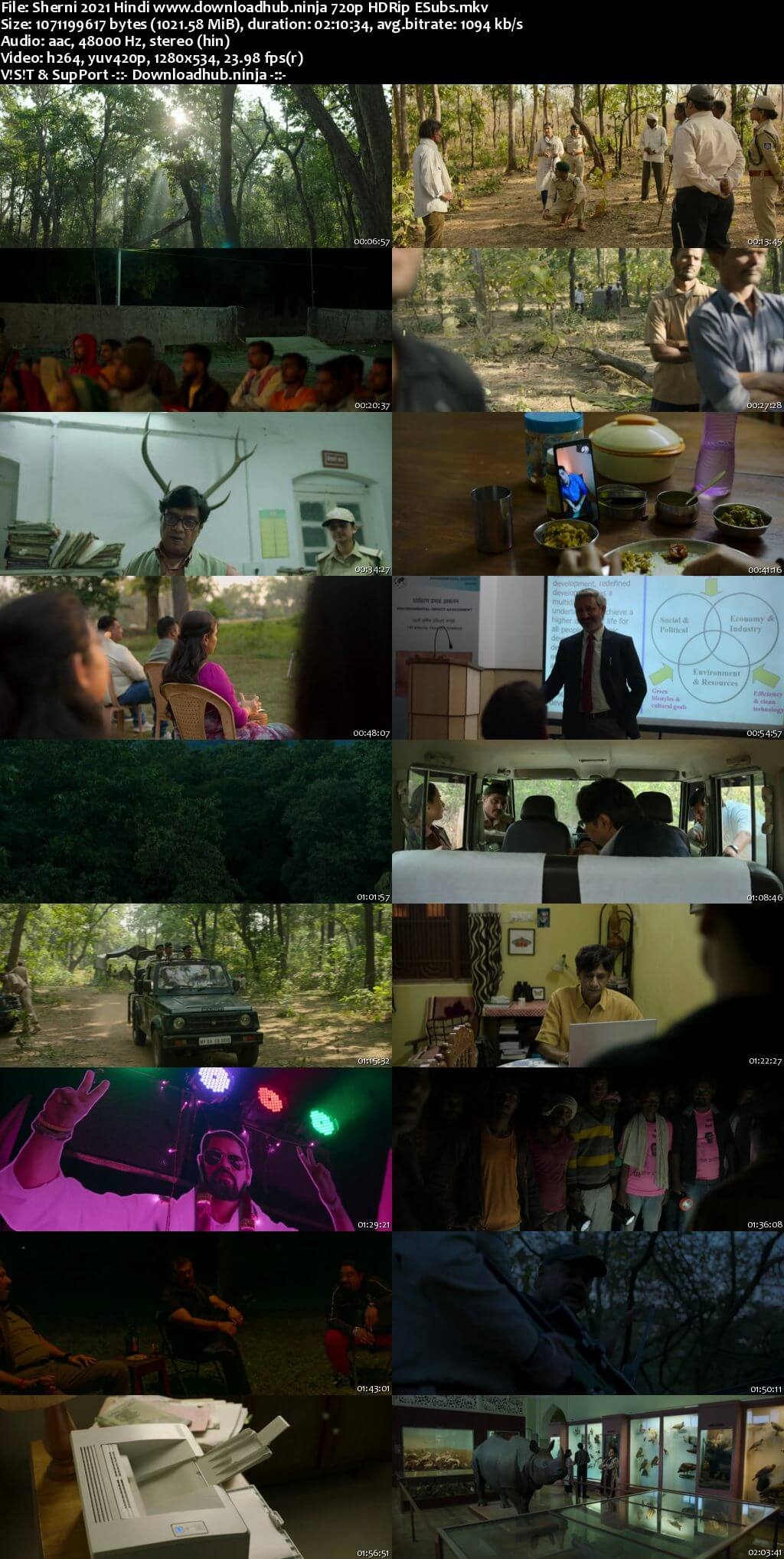 Sherni 2021 Hindi 720p HDRip ESubs