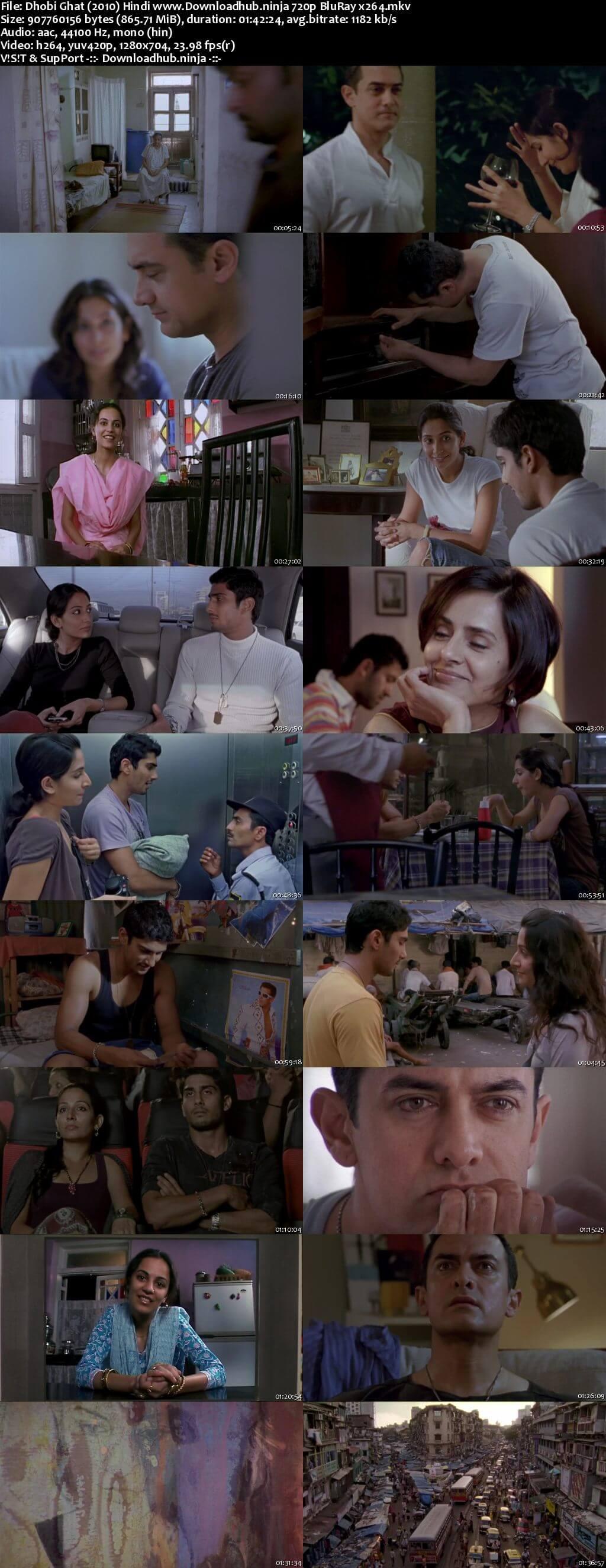 Dhobi Ghat 2010 Hindi 720p BluRay x264