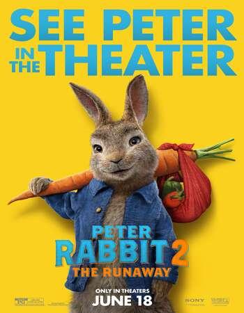 Peter Rabbit 2 The Runaway 2021 English 720p Web-DL 800MB ESubs
