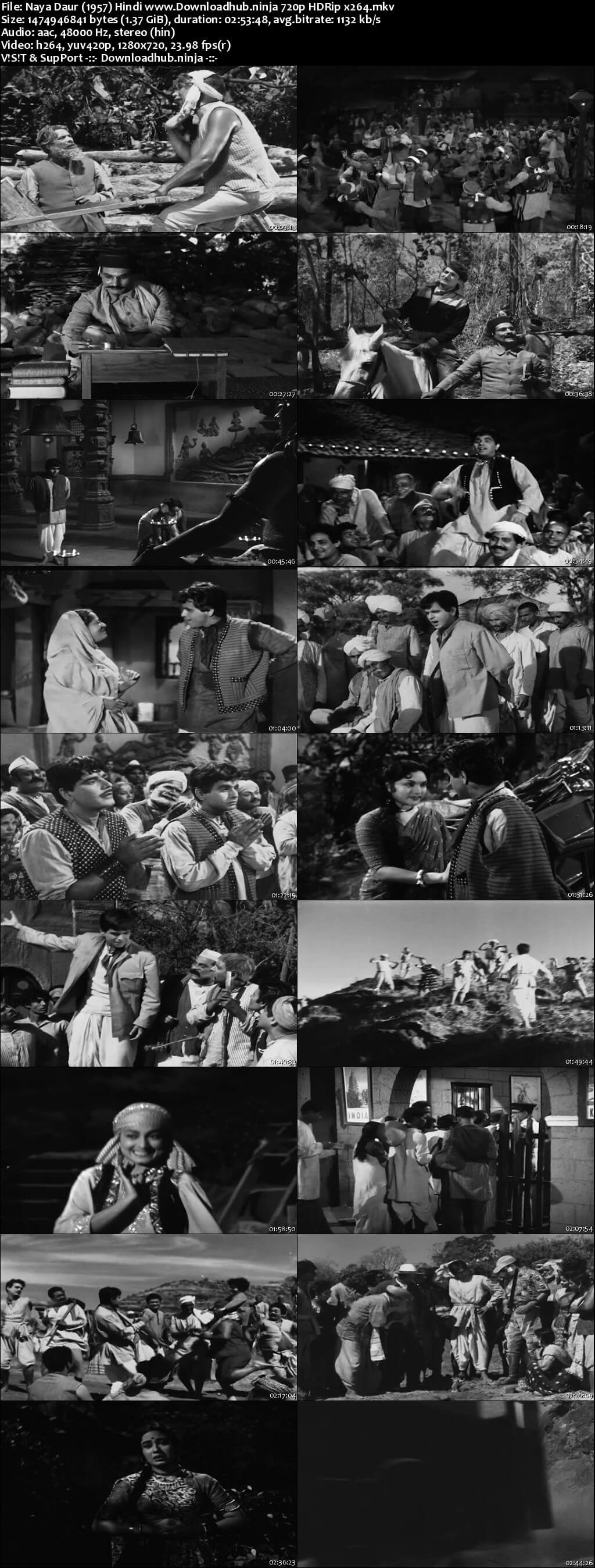 Naya Daur 1957 Hindi 720p HDRip x264