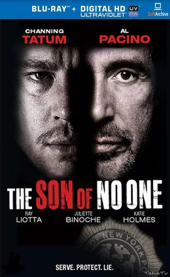 The Son Of No One 2011 Dual Audio Hindi BluRay Movie Download