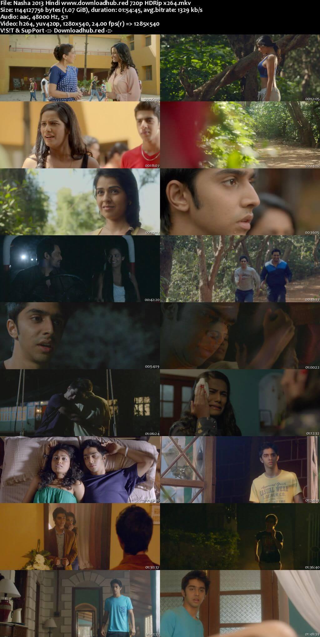 Nasha 2013 Hindi 720p HDRip x264