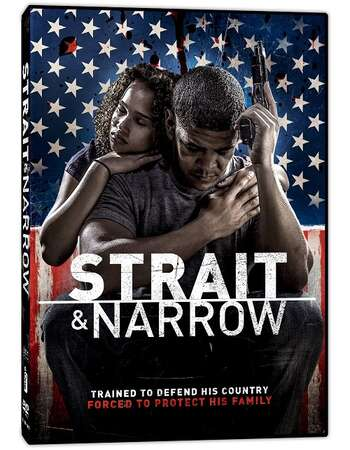 Strait And Narrow 2016 Hindi Dubbed 720p Web-DL ESubs