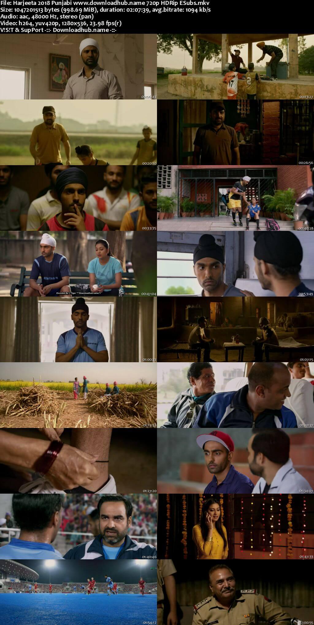 Harjeeta 2018 Punjabi 720p HDRip ESubs