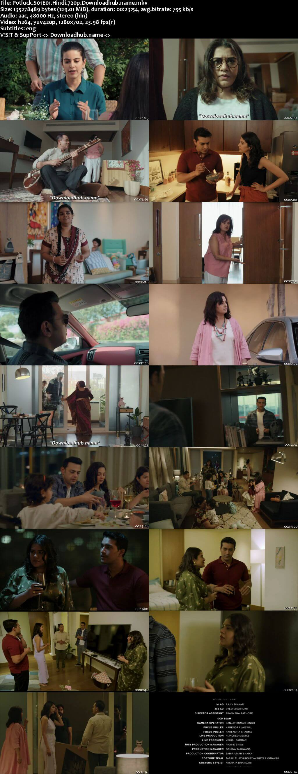 Potluck 2016 S01 Complete Hindi 720p Web-DL MSubs