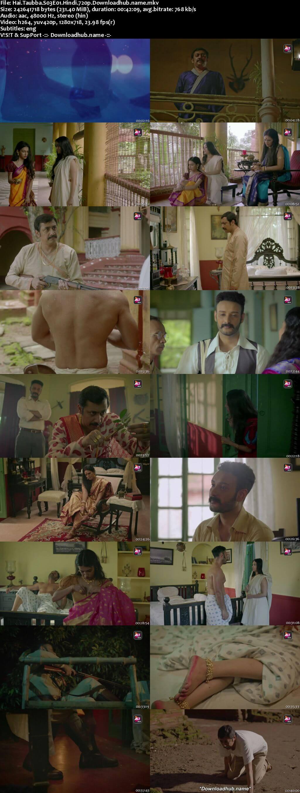 Hai Taubba 2021 Hindi Season 03 Complete 720p HDRip ESubs