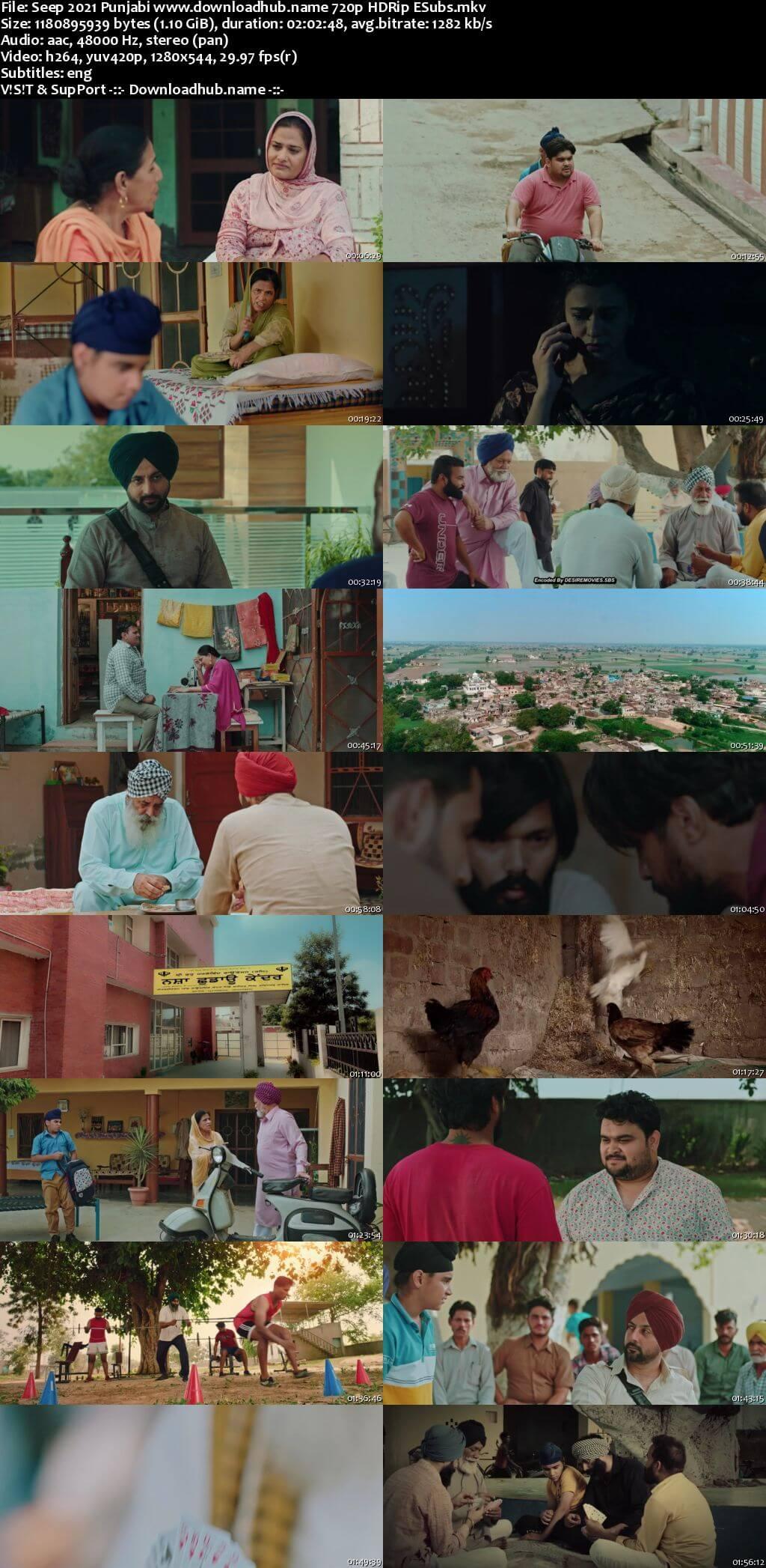 Seep 2021 Punjabi 720p HDRip ESubs