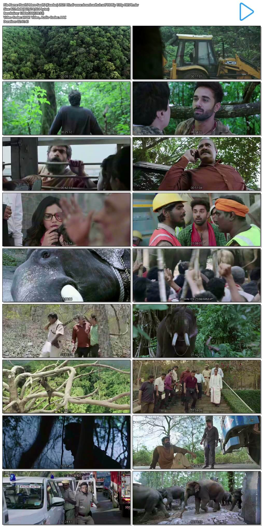 Haathi Mere Saathi (Kaadan) 2021 Hindi 800MB HDRip 720p HEVC