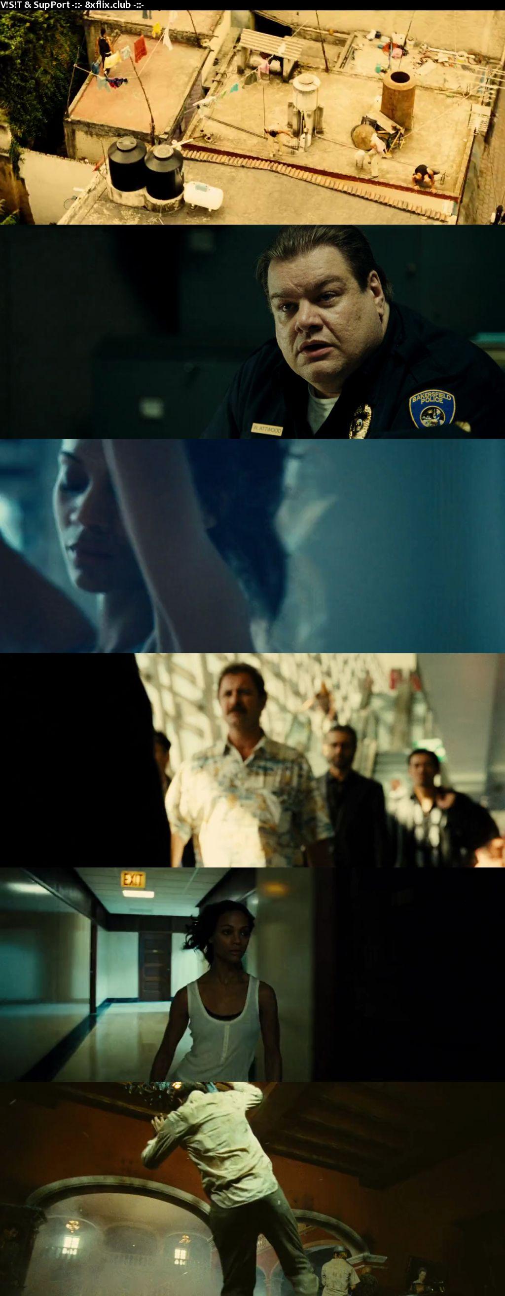Colombiana 2011 Hindi English Dual Audio 720p 480p BluRay