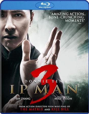 Ip Man 3 (2015) Dual Audio Hindi 720p 480p BluRay [900mb 300mb]