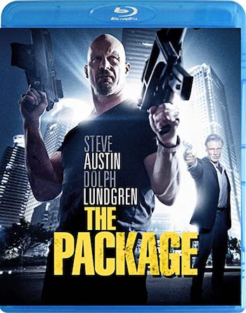 The Package 2013 Dual Audio Hindi 720p 480p BluRay [800MB 300MB]